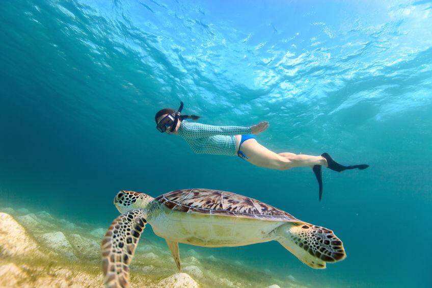 http://www.jamaica-reggae-music-vacation.com/Swimming-Alone.html