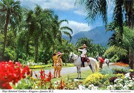 Hope Gardens in Kingston, Jamaica, https://www.jamaica-reggae-music-vacation.com/Travel-To-Kingston-Jamaica.html