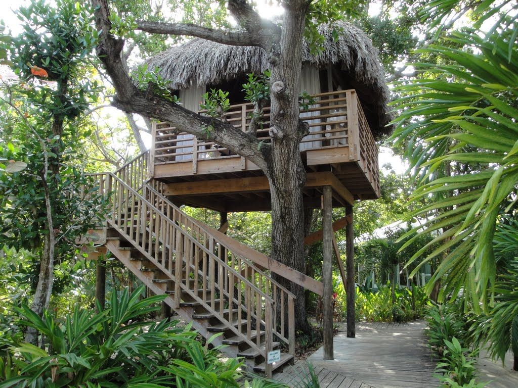 Unique Tree House Cottage in Negril, Jamaica. http://www.jamaica-reggae-music-vacation.com/Negril-Tree-House-Cottages.html
