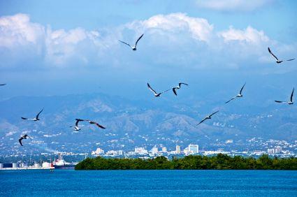 http://www.jamaica-reggae-music-vacation.com/kingston-jamaica.html