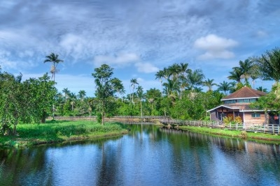 Cotton Tree Lake House, Negril