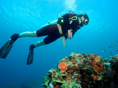 scuba diving, https://www.jamaica-reggae-music-vacation.com/Montego-Bay-Marine-Park.html