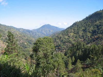 Jamaica Blue Mountains  https://www.jamaica-reggae-music-vacation.com/Jamaican-Blue-Mountain-Coffee.html