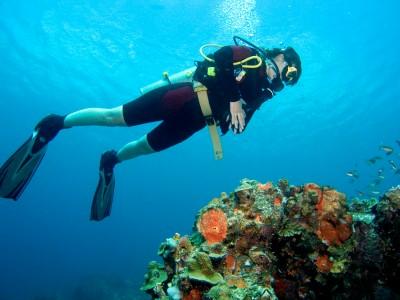 scuba diving, https://www.jamaica-reggae-music-vacation.com/Montego-Bay-Marine-Park.html